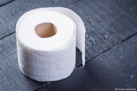 Как люди обходились без туалетной бумаги?