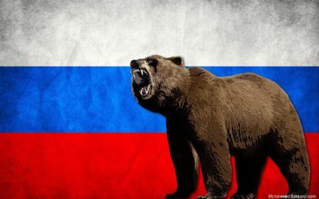 Россияне назвали медведя наиболее подходящим символом государства