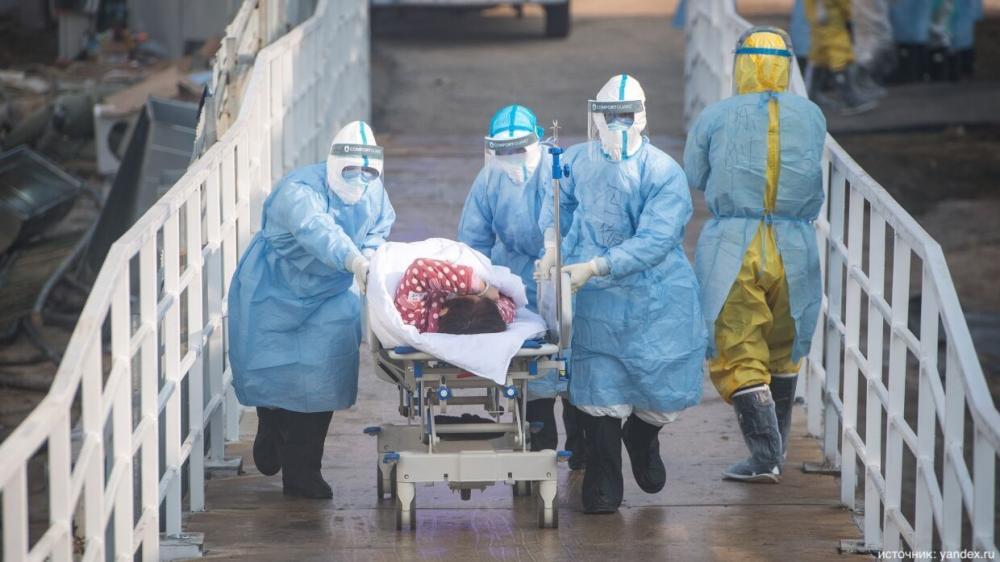 Хантавирус. В Саратовской области обнаружен очаг возгорания